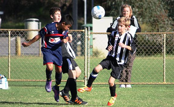 Under 12's Suffer Rare Defeat