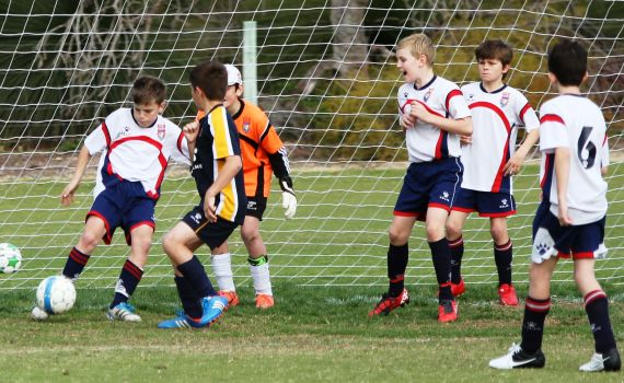 Under 12's to good for League Leaders