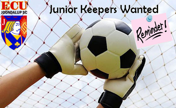 Junior Goalkeepers Wanted