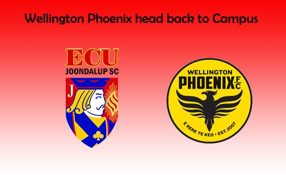 Wellington Phoenix head back to the Campus
