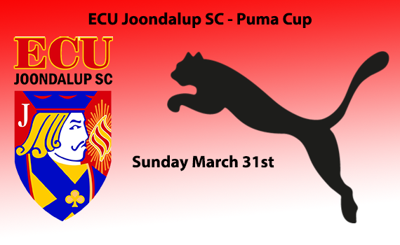Puma Cup just around the corner
