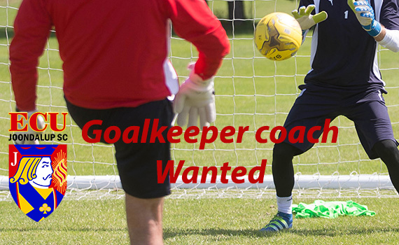 Goalkeeper coach wanted
